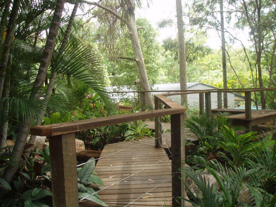 Chapel Hill - Timber rainforest walkway