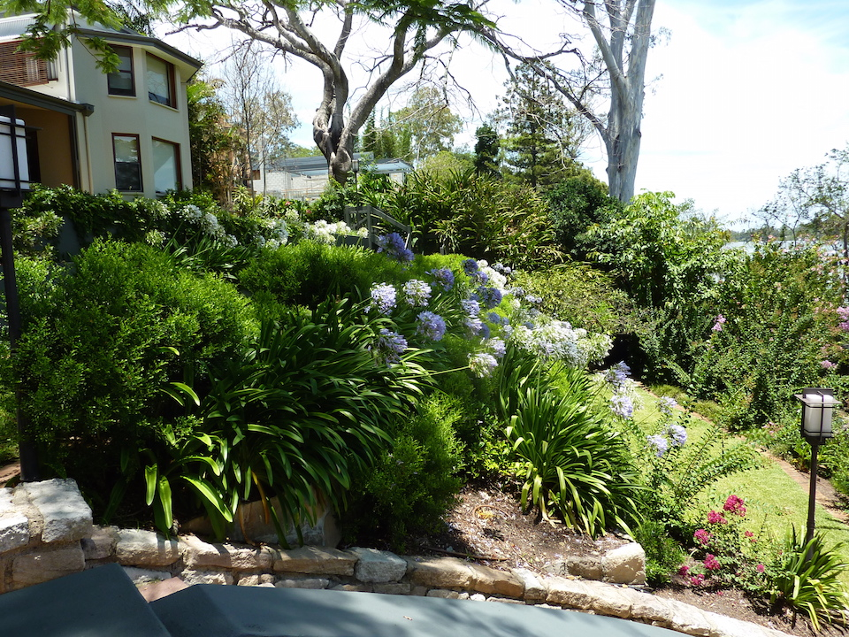 Garden design brisbane landscape design plantscapes for Garden design brisbane