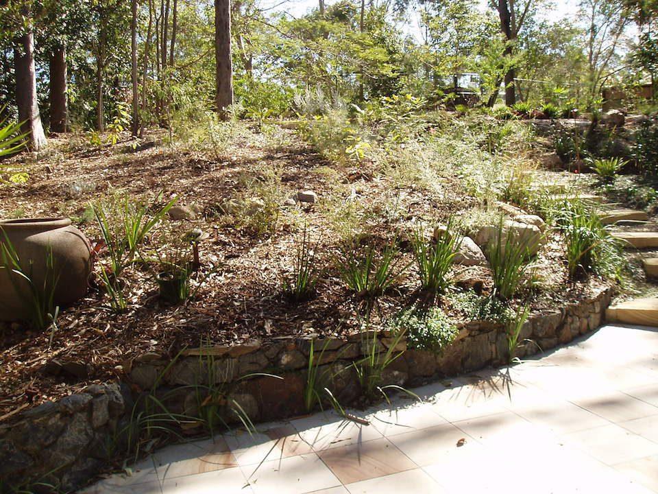 Planting - Chapel hill - Garden Makeover